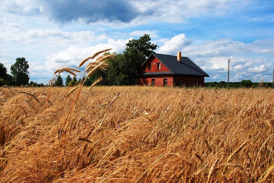 Стоимость земли в польше дубай заказ на дом