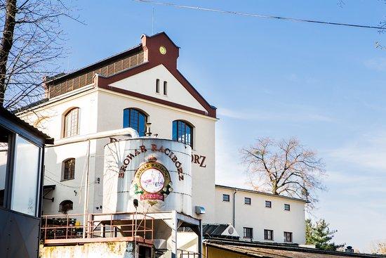 Пять крупнейших пивоварен Польши, открытых для гостей и дегустации